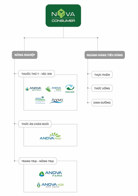 cấu trúc công ty Nova Consumer Group thuộc NovaGroup